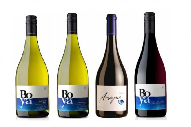vinhos amayna